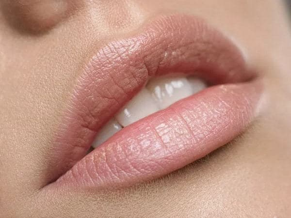 Nude pink Lipstick for Olive Skin