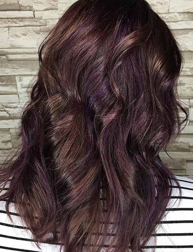 intriguing purple brown hair color