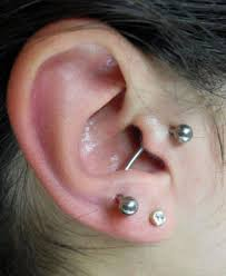 tragus piercing picture